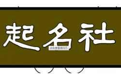 2017年杜姓男孩取名介绍